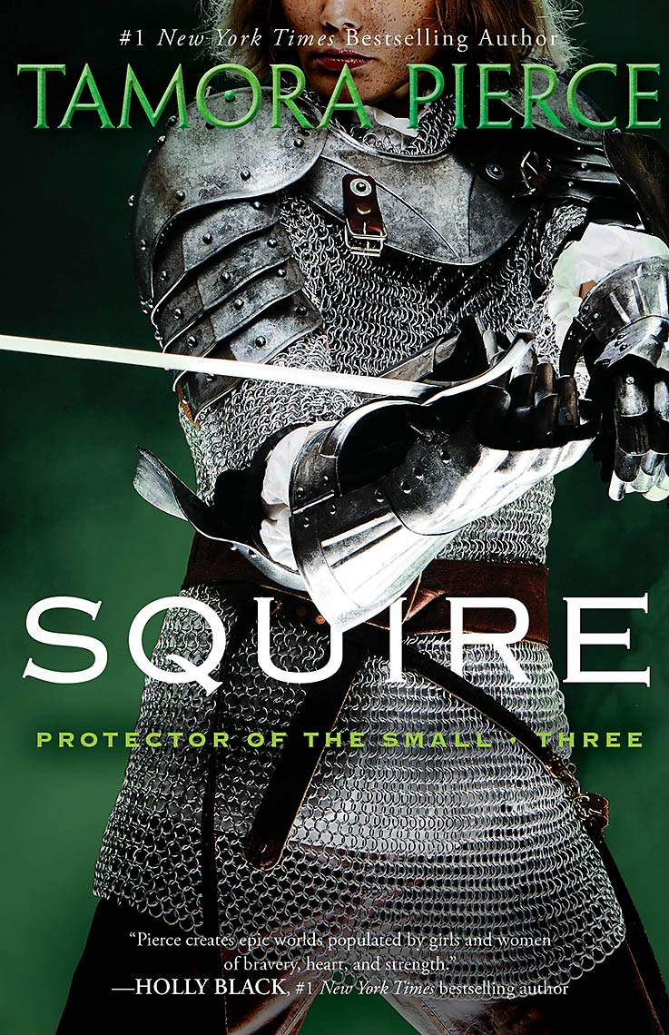 Howard_Huang_protector_Squire